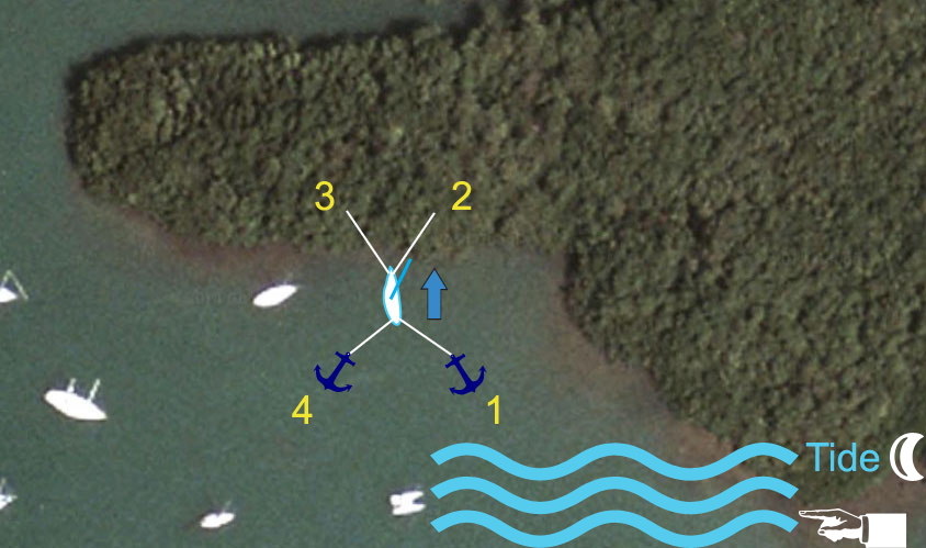 Mangrove-tie-down-diagram