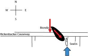 diagram-of-accident