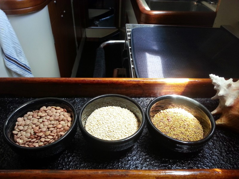 grains_seeds_legumes