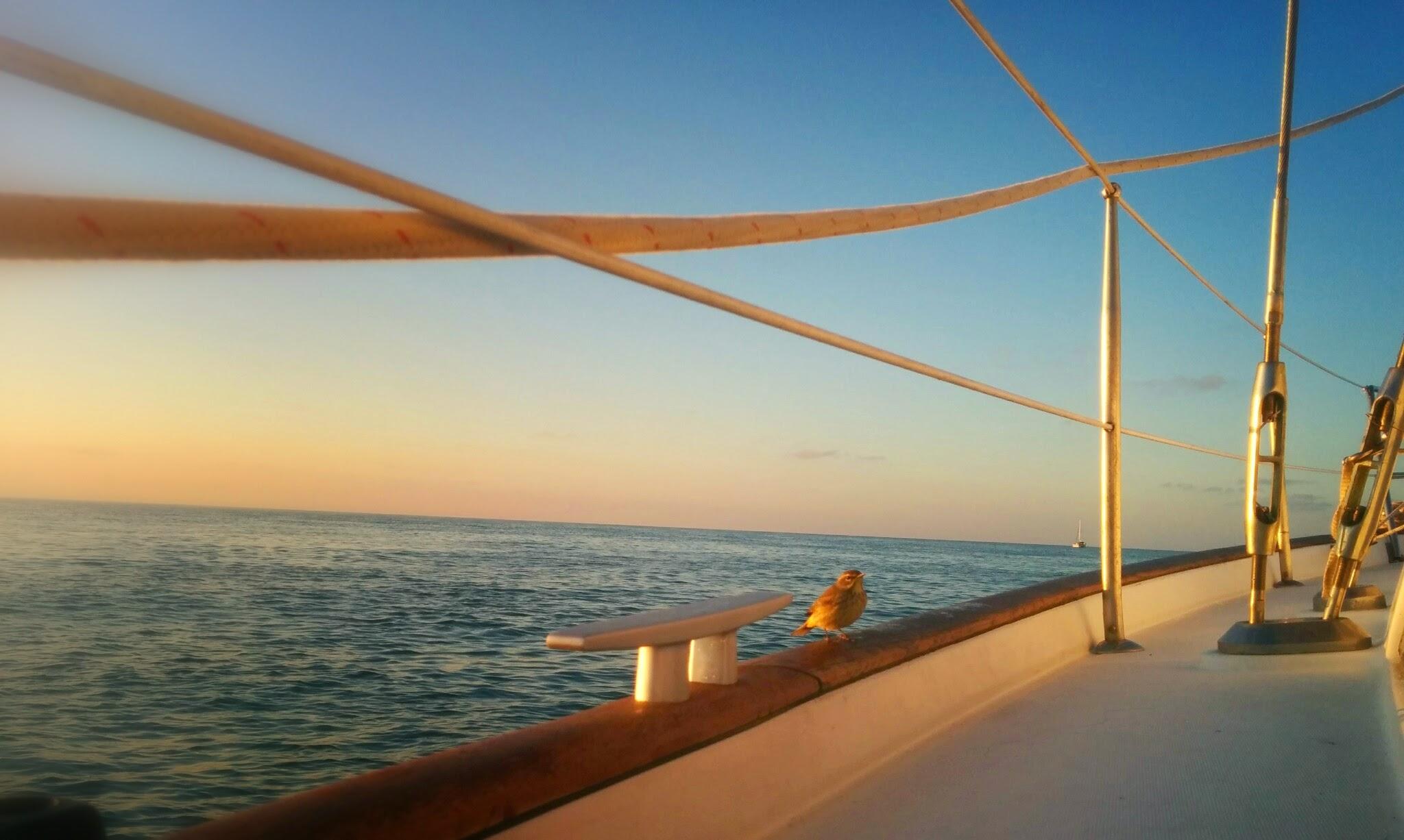 Goodbye Marquesas